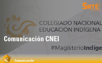 Comunicación CNEI
