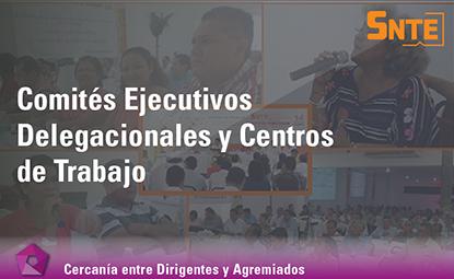 Comités Ejecutivos Delegacionales  y Centros de Trabajo