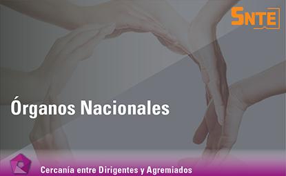 Órganos Nacionales
