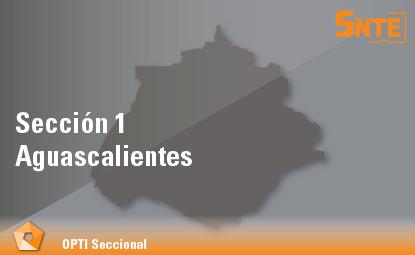 Sección 1. Aguascalientes
