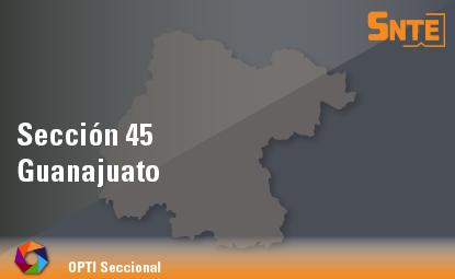 Sección 45. Guanajuato