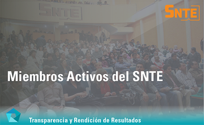 Miembros Activos del SNTE