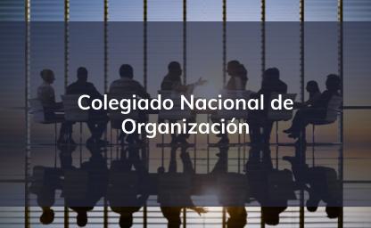 Colegiado Nacional de Organización