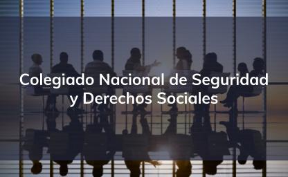 Colegiado Nacional de Seguridad y Derechos Sociales